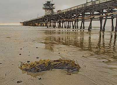 Photograph - S C Pier  by Tom Kelly