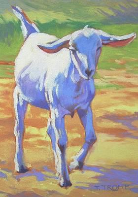 Saanen Goat Painting - Saanen Kid by Teresa Tromp