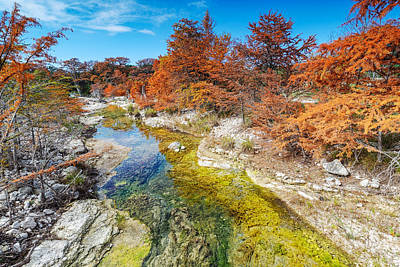 Photograph - Sabinal River Magic Utopia Texas Hill Country by Silvio Ligutti