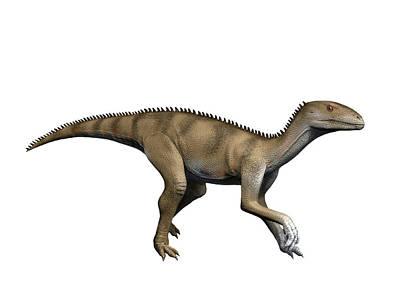Triassic Photograph - Sacisaurus Is An Extinct Dinosaur by Nobumichi Tamura