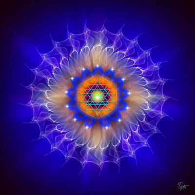 Digital Art - Sacred Geometry 165 by Endre Balogh