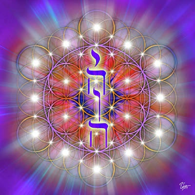 Digital Art - Sacred Geometry 64 by Endre Balogh