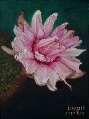 Painting - Sacred Red Lotus by Mukta Gupta