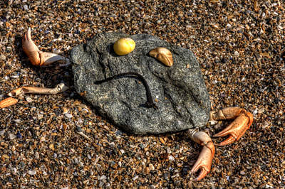 Photograph - Sad Rock Crab by Beverly Cash