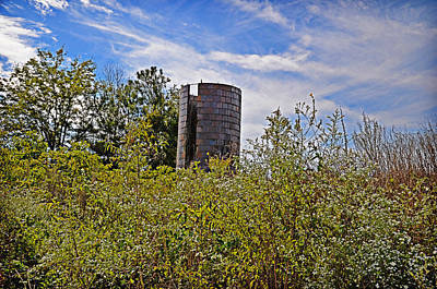 Photograph - Sad Silo by Linda Brown