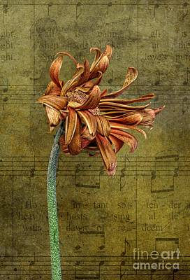 Art Print featuring the digital art Sad Song by Shirley Mangini