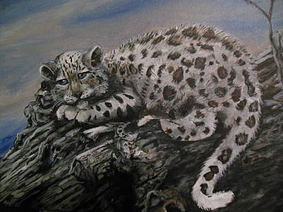 Cat Painting - Snow Leopard V1 by Demian Legg