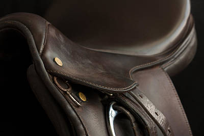 Photograph - Saddle 1 by M Davis