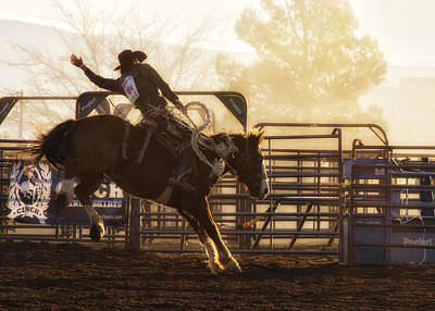 Photograph - Saddle Bronc Riding At The Cottonwood Rodeo by Priscilla Burgers