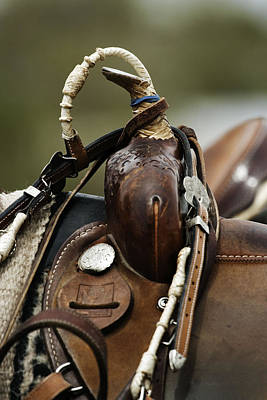 Photograph - Saddle by Jeanne Hoadley