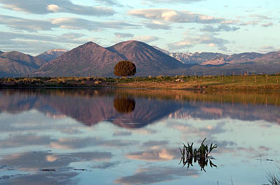 Photograph - Saddle Mountain Reflection by Eric Rundle