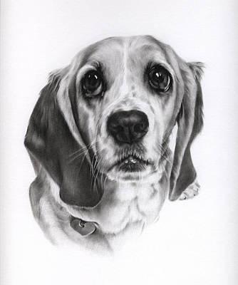 Art Print featuring the drawing Sadie by Natasha Denger