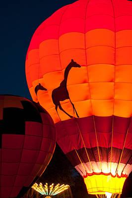 Photograph - Safari Glow by Paul Mangold