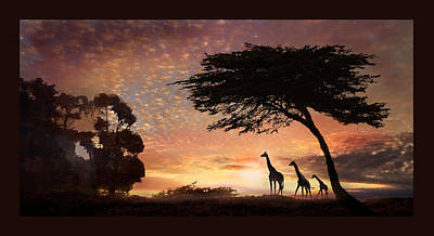Photograph - Safari Sunset by Melinda Hughes-Berland