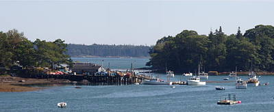 Photograph - Safe Harbor by Georgia Hamlin