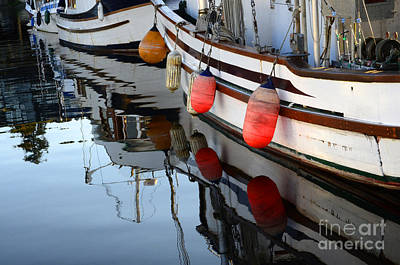 Photograph - Safe Harbour by Bob Christopher