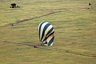 Photograph - Safe Landing by Tony Murtagh