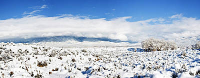 Sage Covered With Snow With Taos Art Print by Panoramic Images