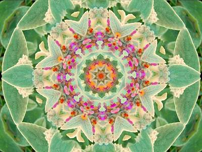 Digital Art - Sage Flower Mandala by Diane Lynn Hix