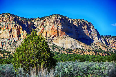 Photograph - Sage Mountain by Rick Bragan