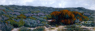Sage On The Dunes Art Print