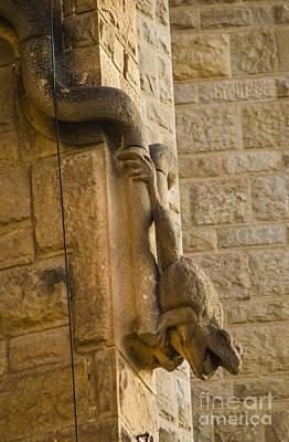 Photograph - Sagrada Frog Gargoyle by Deborah Smolinske