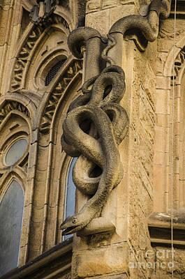Barcelona Photograph - Sagrada Serpent Gargoyle by Deborah Smolinske