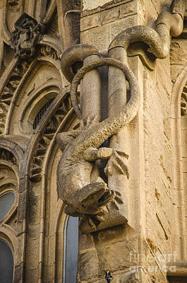 Photograph - Sagrada Wall Lizard Gargoyle by Deborah Smolinske