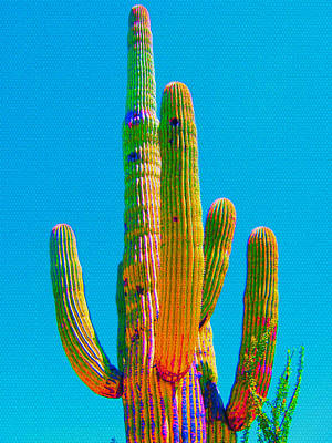 Mixed Media - Saguaro Colors by Michelle Dallocchio