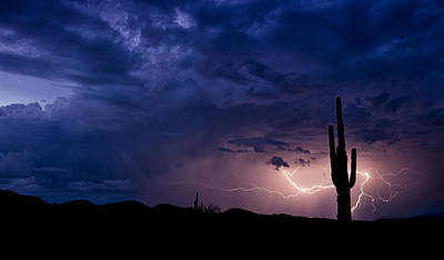 Lightning Bolt Photograph - Saguaro Lightning  by Saija  Lehtonen