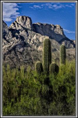Digital Art - Saguaro Mountain Blend by Mark Myhaver