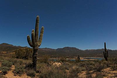 Saguaro Near Bartlett Reservoir Art Print by Rick Berk