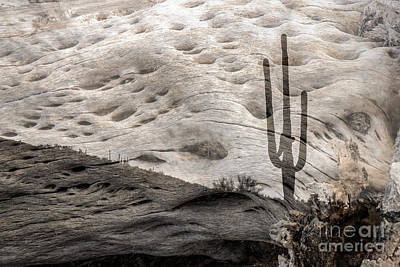 Photograph - Saguaro Skeleton by Marianne Jensen