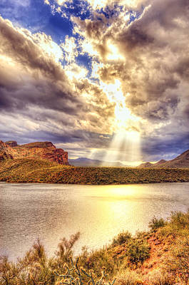 Photograph - Saguaro Sun Rays  by Anthony Citro
