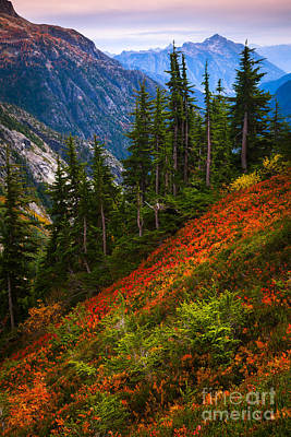 North Cascades Photograph - Sahale Arm by Inge Johnsson