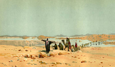 Sahara Drawing - Sahara 19th Century Desert Camels by English School