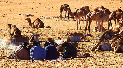 Sahara Mixed Media - Sahara Caravan Tea Break by Anthony Dalton