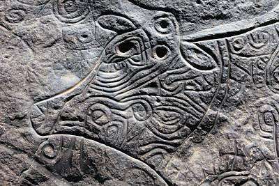 Saharan Cow Rock Carving Art Print by Martin Rietze