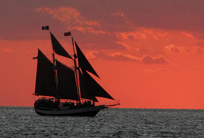 Photograph - Key West Sunset Sail 5 by Bob Slitzan