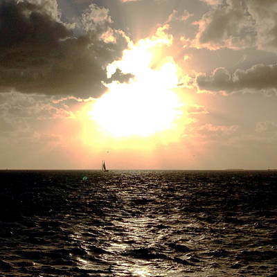 Photograph - Sail Away Key West by Loretta Luglio