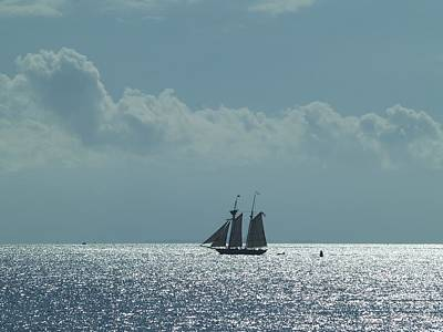 Photograph - Sail Away by Patricia McKay