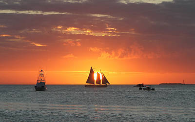 Photograph - Sail Away by Richard Mitchell