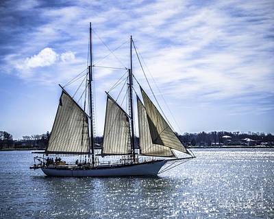 Photograph - Sail Boat by Ronald Grogan