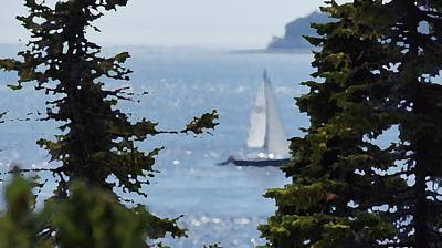 Photograph - Sail On by David and Lynn Keller