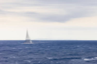Photograph - Sailboat by Alfio Finocchiaro