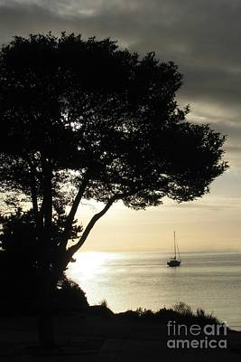 Photograph - Sailboat At Dawn by Barbara Henry