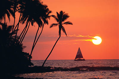 Photograph - Sailboat At Sunset by Bob Abraham - Printscapes