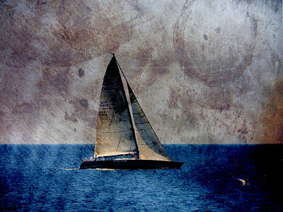 Digital Art - Sailboat Bird W Metal by Anita Burgermeister