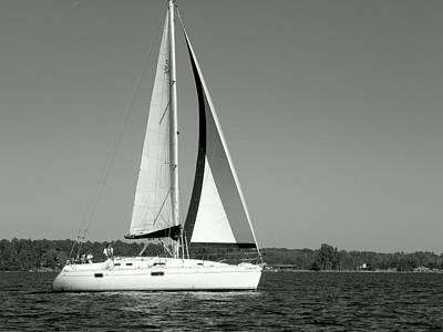 Photograph - Sailboat Black And White by Lisa Wooten