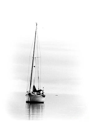 Photograph - Sailboat Bw Too by Barbara Henry